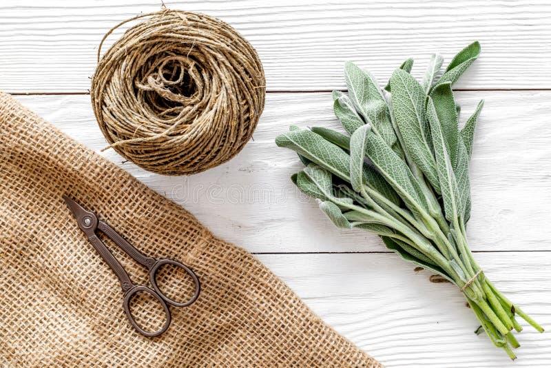 La configuration plate avec les herbes et la verdure fraîches pour sécher et faire des épices a placé sur le fond en bois blanc d photos stock