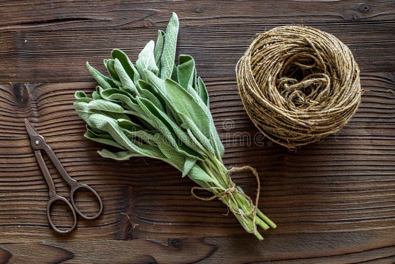 La configuration plate avec les herbes et la verdure fraîches pour sécher et faire des épices a placé sur le fond en bois de cuis photo libre de droits