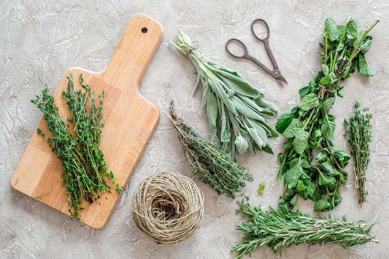 La configuration plate avec les herbes et la verdure fraîches pour sécher et faire des épices a placé sur le fond en pierre de cu photographie stock