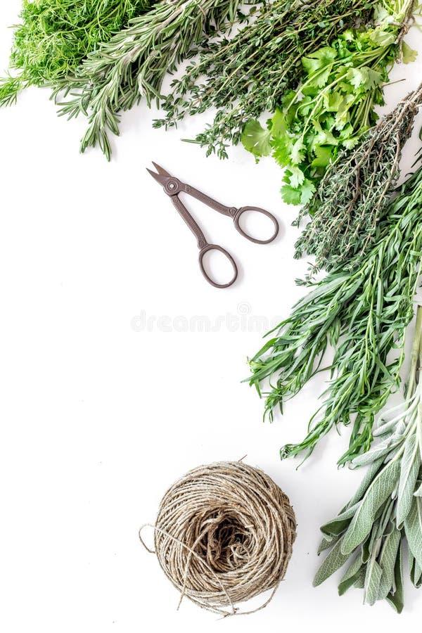 La configuration plate avec les herbes et la verdure fraîches pour sécher et faire des épices a placé sur la maquette blanche de  photo stock