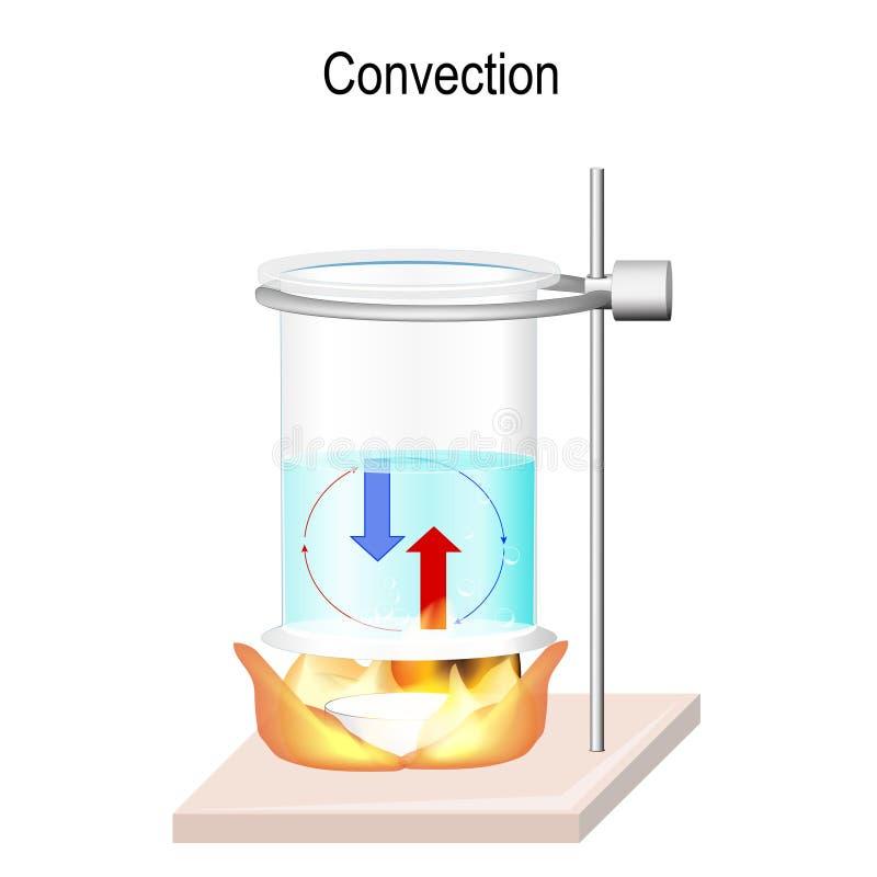 La convezione è il trasferimento di calore all'interno dei liquidi illustrazione vettoriale