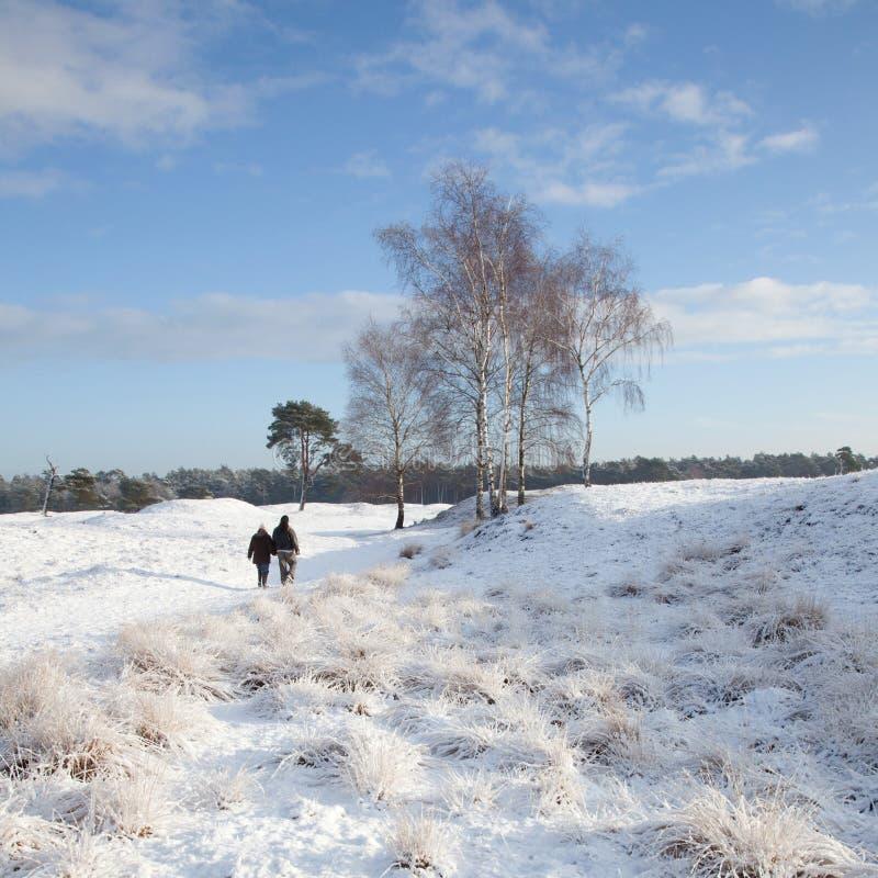 La coppia cammina vicino a Zeist nell'inverno immagine stock libera da diritti