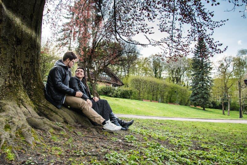 La coppia si siede sotto l'albero sul tramonto fotografie stock