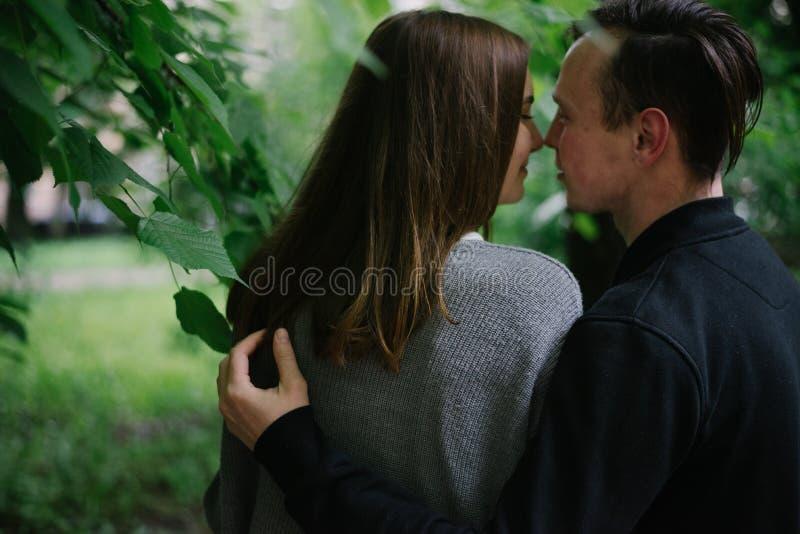 La coppia si siede sulla vista del banco dalla parte posteriore fotografia stock libera da diritti