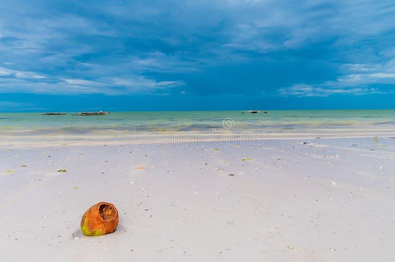 La coquille de noix de coco se trouve sur le sable blanc sur l'océan images libres de droits