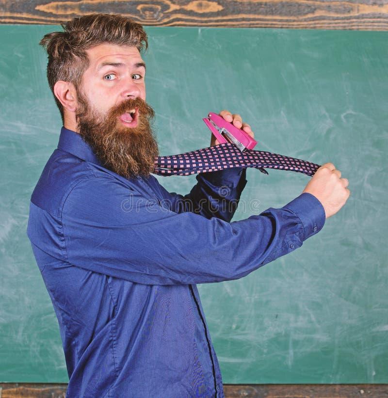 La corbata del desgaste formal del profesor del inconformista sostiene la grapadora Enseñe el papel Manera peligrosa de la grapad imagen de archivo libre de regalías
