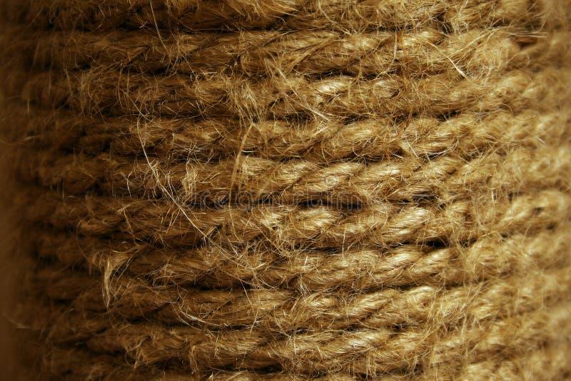 La corde est enroulée sur le tuyau Fond des cordes Chat rayant le poteau photographie stock libre de droits