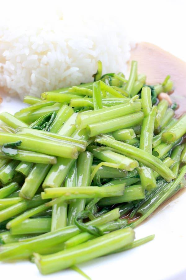 La correhuela china sofrita, espinaca del agua, Tumis Kangkung, sofrió correhuela dang de fri del boong del puk del phad Alimento imagenes de archivo