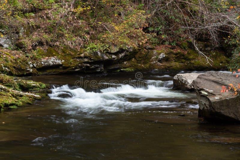 La corrente del terreno boscoso con le piccoli rapide, foglie di autunno e muschio ha coperto le rocce fotografie stock libere da diritti