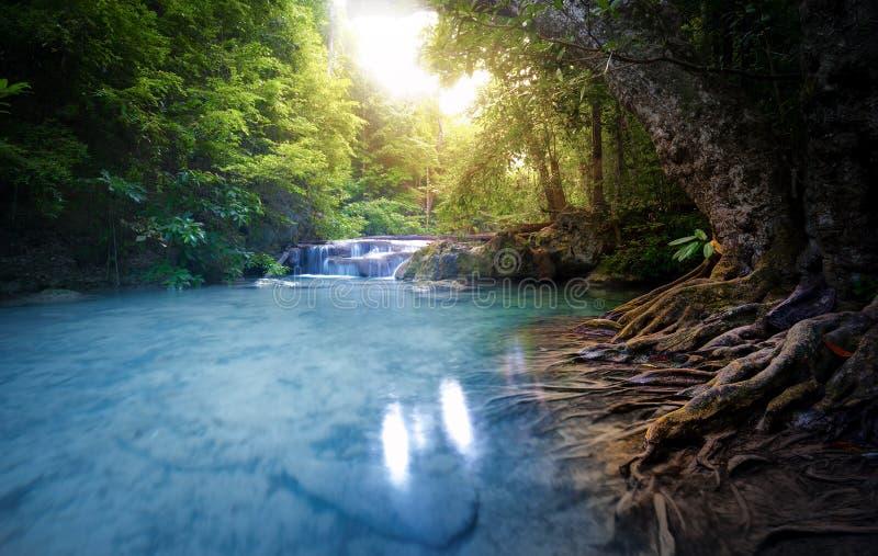 La corriente del río del agua potable atraviesa el bosque enorme su hermoso imagen de archivo