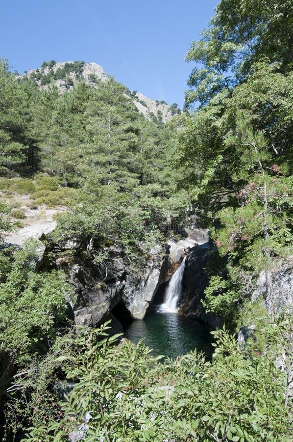 La Corse photo libre de droits