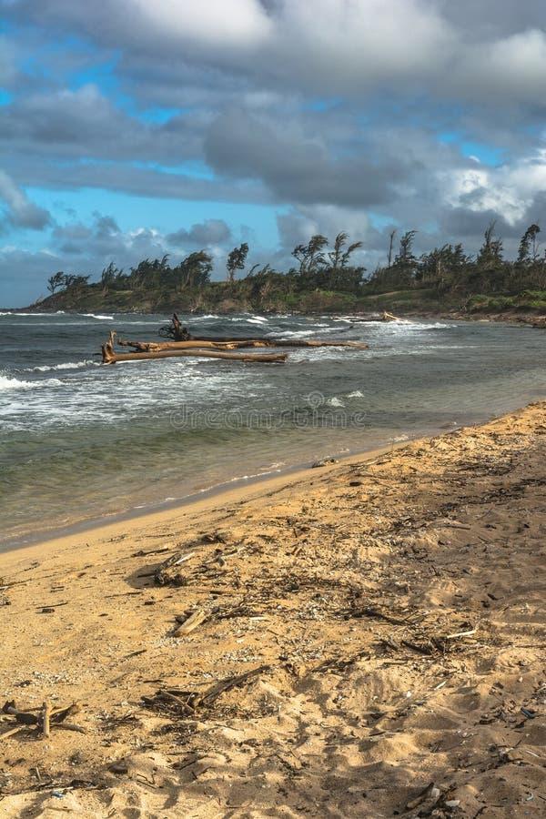 La costa lungo Wailua, Kauai, Hawai fotografia stock