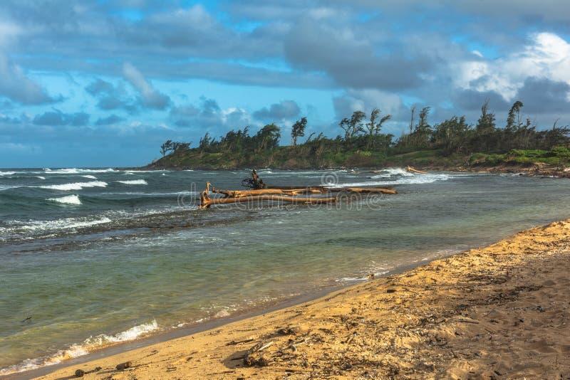 La costa lungo Waipouli, Kauai, Hawai fotografia stock libera da diritti