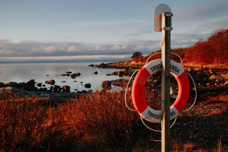La costa rocciosa al tramonto in dettaglio in Svezia immagini stock libere da diritti