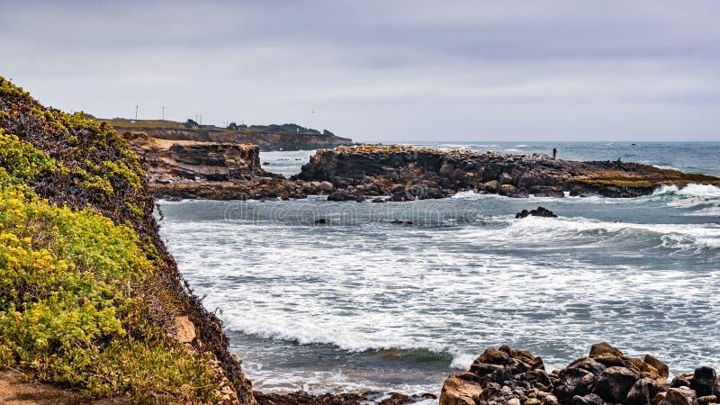 La costa costa rugosa en un día nublado, playa de estado de Pescadero, California del Océano Pacífico imagenes de archivo