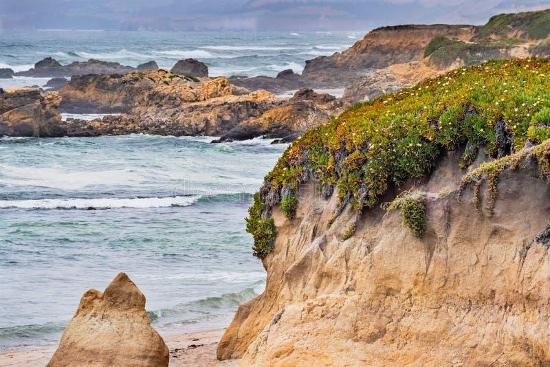 La costa costa rugosa en un día nublado, playa de estado de Pescadero, California del Océano Pacífico fotos de archivo