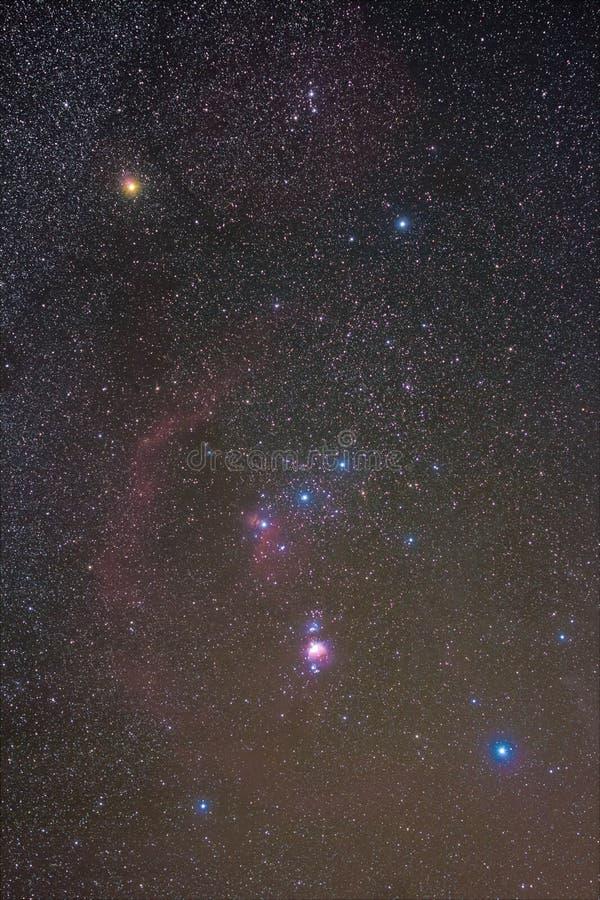La costellazione di Orione immagini stock libere da diritti