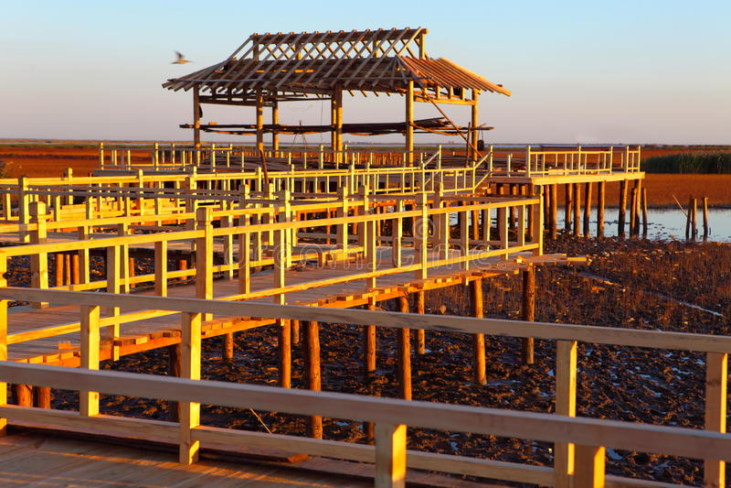 La costruzione delle case di legno fotografia stock for Disegno del piano di costruzione