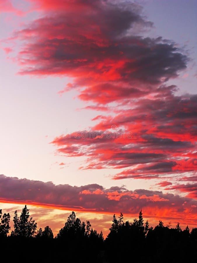 La couleur de la nature fantastique photographie stock