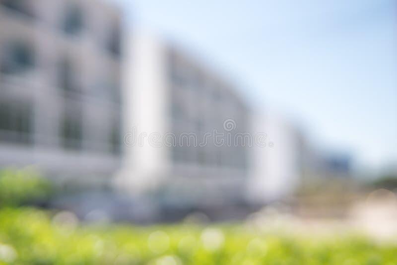 La couleur de ton blanche avec le vert rare laisse le fond brouillé photos stock