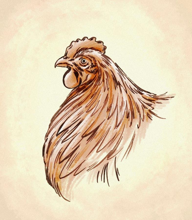 La couleur gravent l'illustration d'isolement de poulet illustration de vecteur
