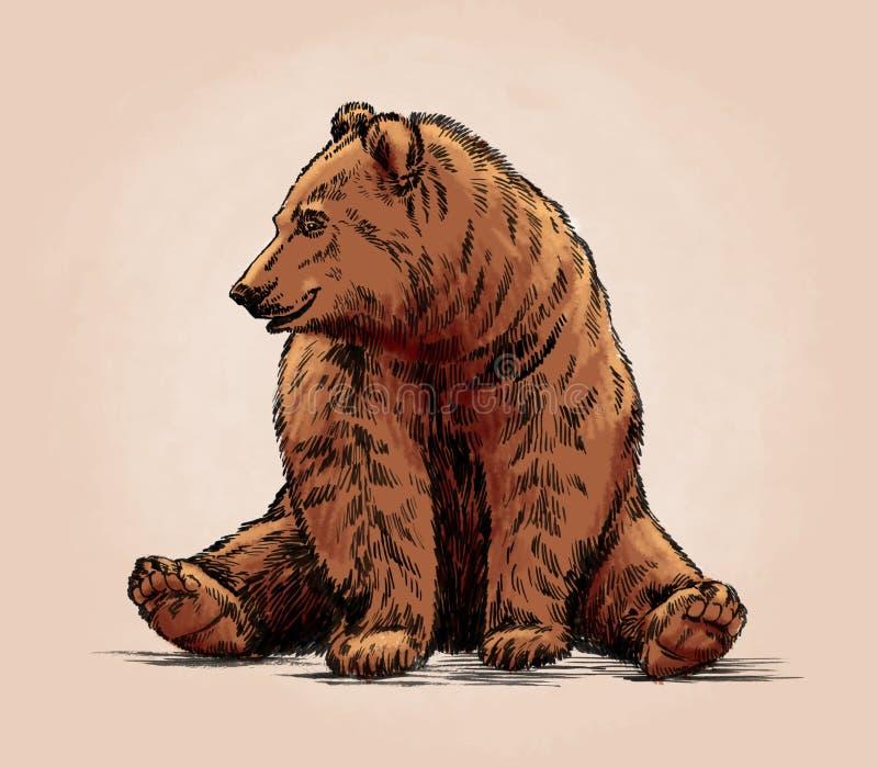 La couleur gravent l'ours gris d'isolement illustration de vecteur