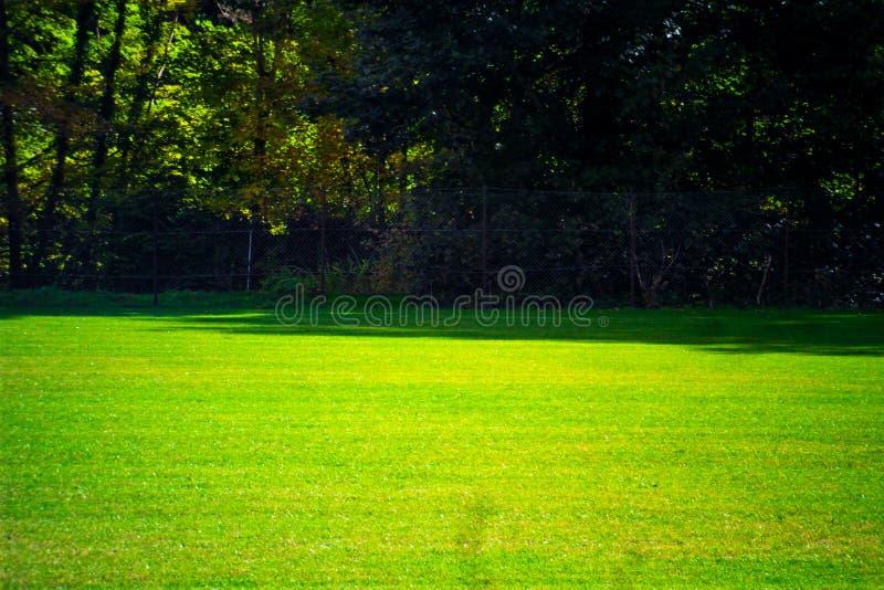 La cour du football avec l'herbe verte de jour vident images libres de droits