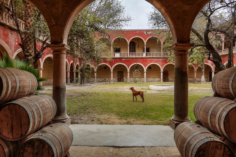 La cour intérieure de la Hacienda jaral Mexique de berrio photo stock