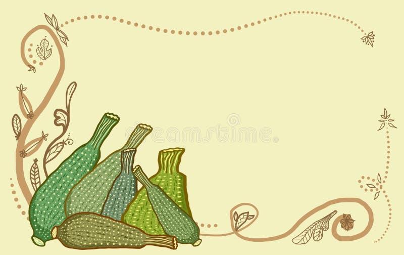 la courgette fraîches de coupure illustration de vecteur