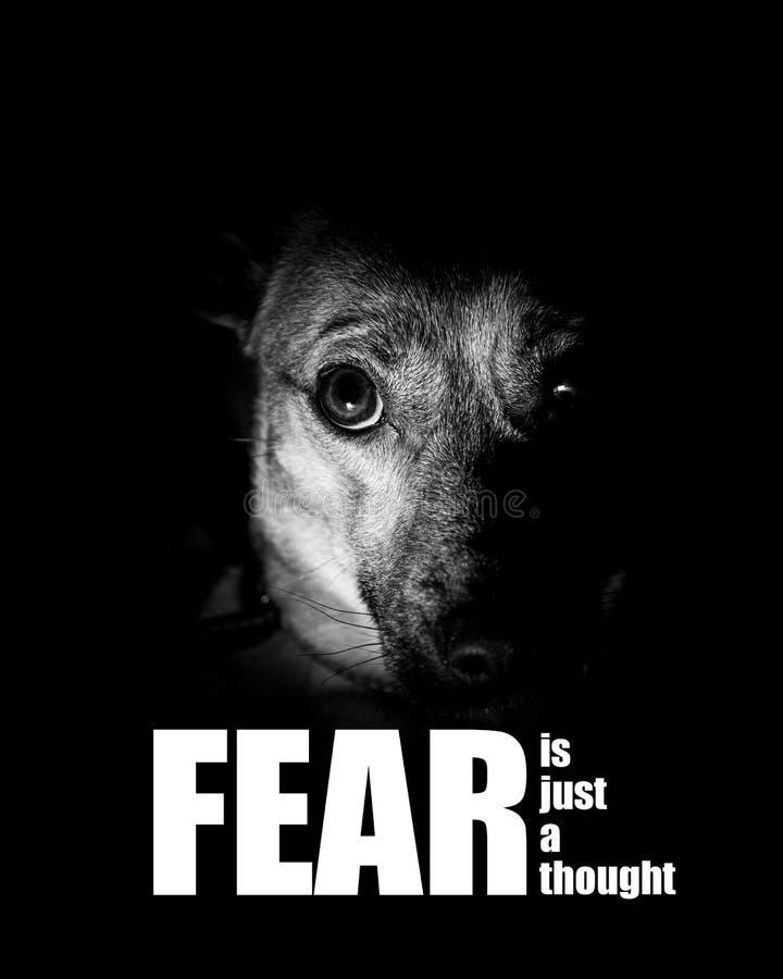 La crainte est juste une pensée - photographie inspirée - photo de motivation de crainte - n'ayez pas peur - être courageuse illustration de vecteur