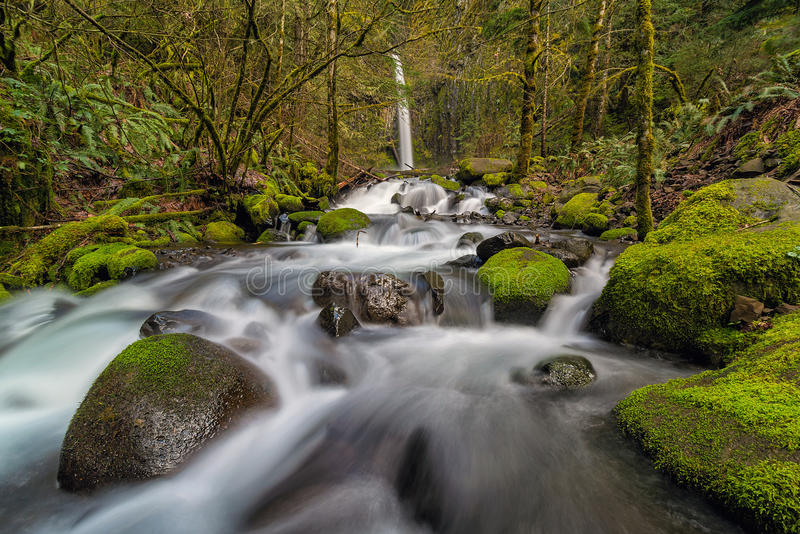 La crique sèche tombe le long de la gorge du fleuve Columbia dans le printemps de l'Orégon photographie stock