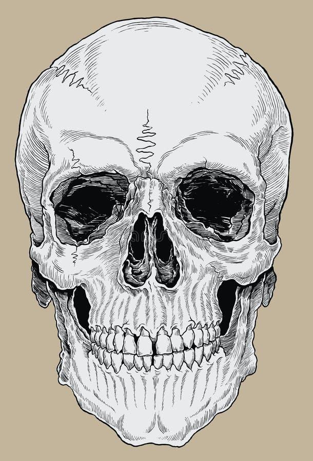 La croix réaliste hachée a encré le crâne humain illustration stock