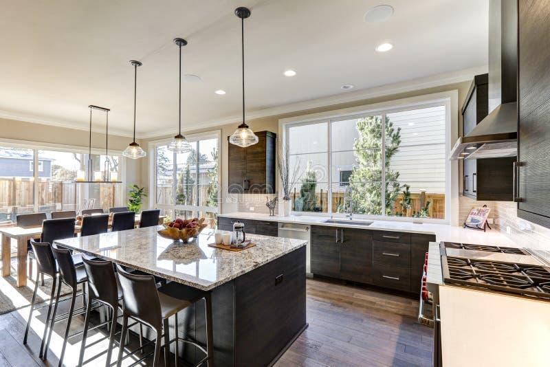La cucina grigia moderna caratterizza i gabinetti anteriori piani grigio scuro immagini stock