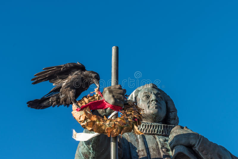 La cueillette énorme de corbeau fleurit d'une guirlande, Nuuk, Groenland image libre de droits