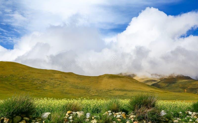 La cuesta del norte del paisaje de la gama de Himalaya fotos de archivo libres de regalías