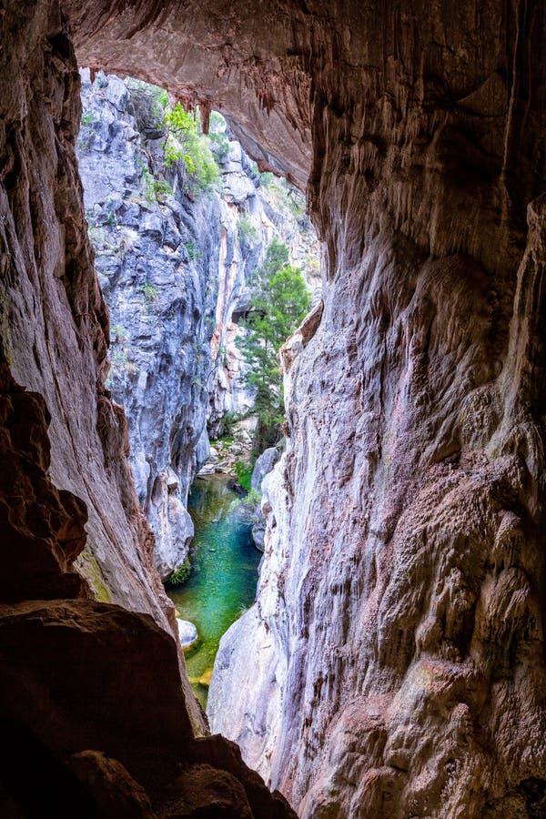 La cueva teñida ofrece una ventana hacia fuera a las yeguas Forest Creek Canyon fotos de archivo libres de regalías