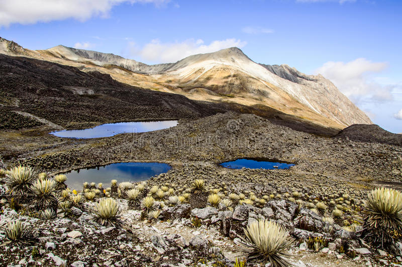 La Culata. One of the many Valleys seen in La Culata National Park stock photography