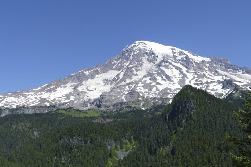 La cumbre volcánica del Mt más lluviosa emerge de bosque de la conífera foto de archivo