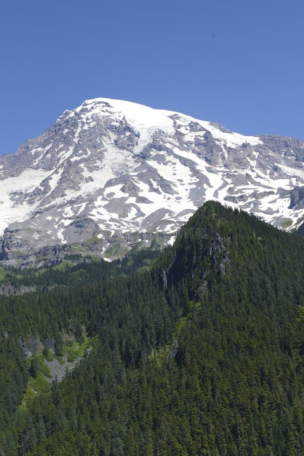 La cumbre volcánica del Mt más lluviosa emerge de bosque de la conífera fotografía de archivo