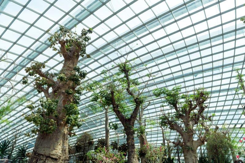 La cupola del fiore ai giardini dalla baia, Singapore immagini stock
