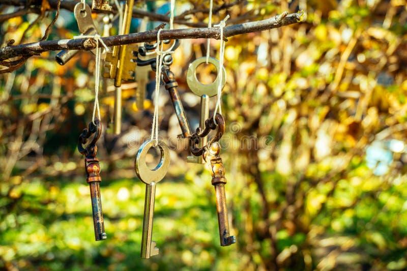 La décoration originale de jardin dans le style rustique pour les vacances photographie stock
