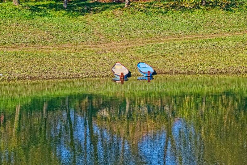 La de rivière de Kupa images libres de droits