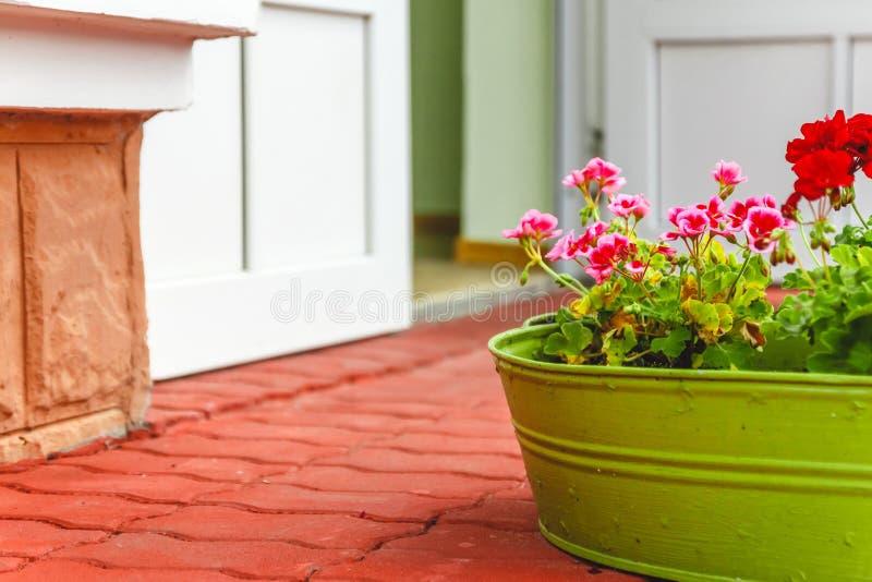 La decoraci?n fuera de la casa, del rosa y de los geranios rojos en un lavabo-florero del verde del metal foto de archivo