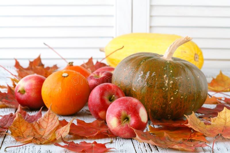La decorazione di autunno ha sistemato con le foglie, le zucche e più asciutti fotografia stock libera da diritti