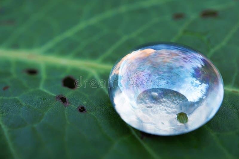 La decorazione di cristallo del gioiello di gocce immagine stock