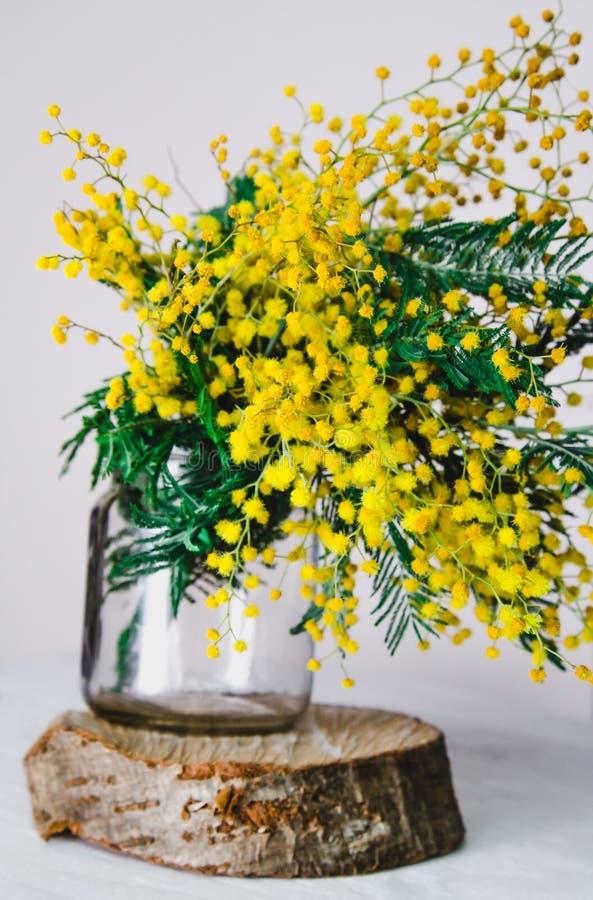 La decorazione domestica, brunch di bella molla di giallo della mimosa fiorisce in vetro su legno immagini stock