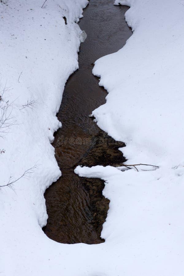 La dernière neige au sol près de l'eau de ruisseau coule dans la forêt au coucher du soleil une journée de printemps photographie stock libre de droits