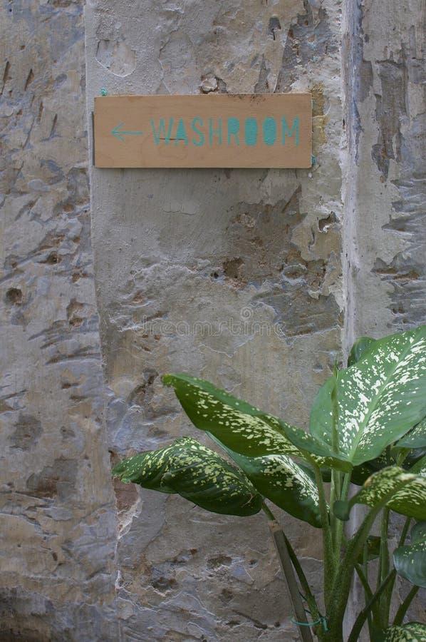 La dieffenbachia pianta e toilette canta fotografia stock
