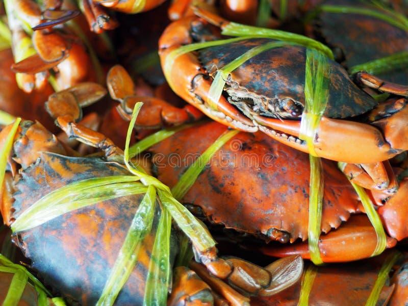 La dimensione enorme ha bollito i granchi cucinati del mare nella marea arancio di colore con la corda di plastica gialla fotografie stock libere da diritti
