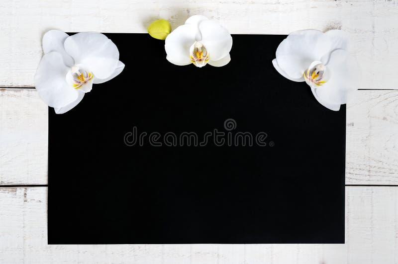 La dimensione nera di rettangolo A4 e un fondo di legno bianco decorati con i fiori bianchi dell'orchidea immagine stock libera da diritti